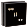 Snö of Sweden Gift Box Set Lou Earring Gold/Clear