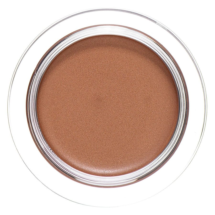 Shiseido Shimmering Cream Eye Color BR731 6g
