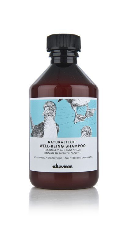 Davines NATURALTECH Well-Being Shampoo 250 ml